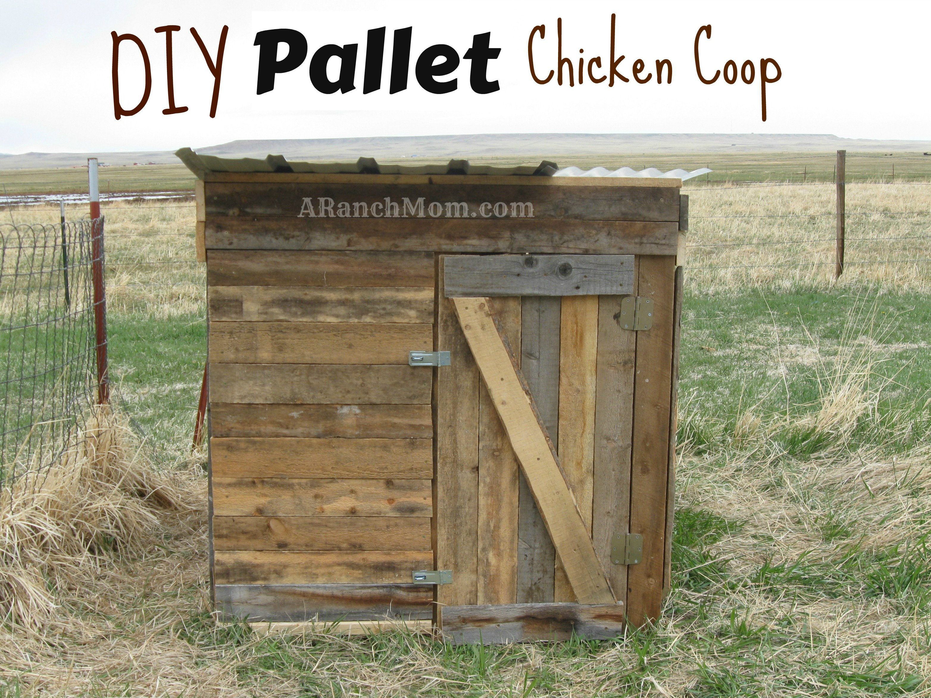 Simple homemade chicken coop