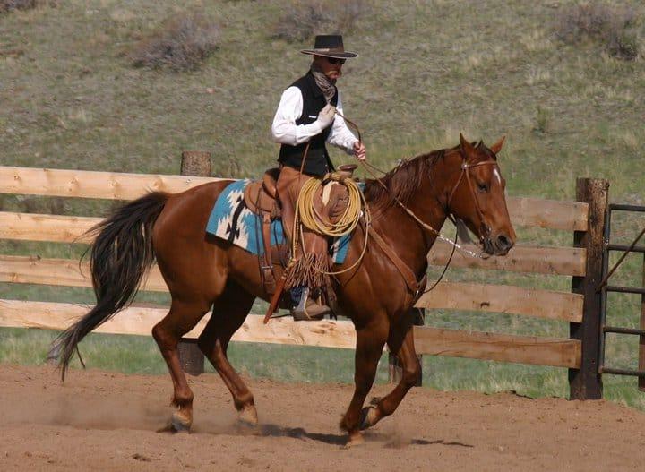 Matt Turner - working cowboy
