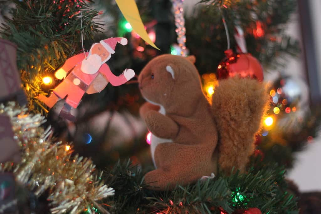 Lucia was sitting her stuffed animals in the tree one day. Looks like the squirrel and the Santa are having a good talk...