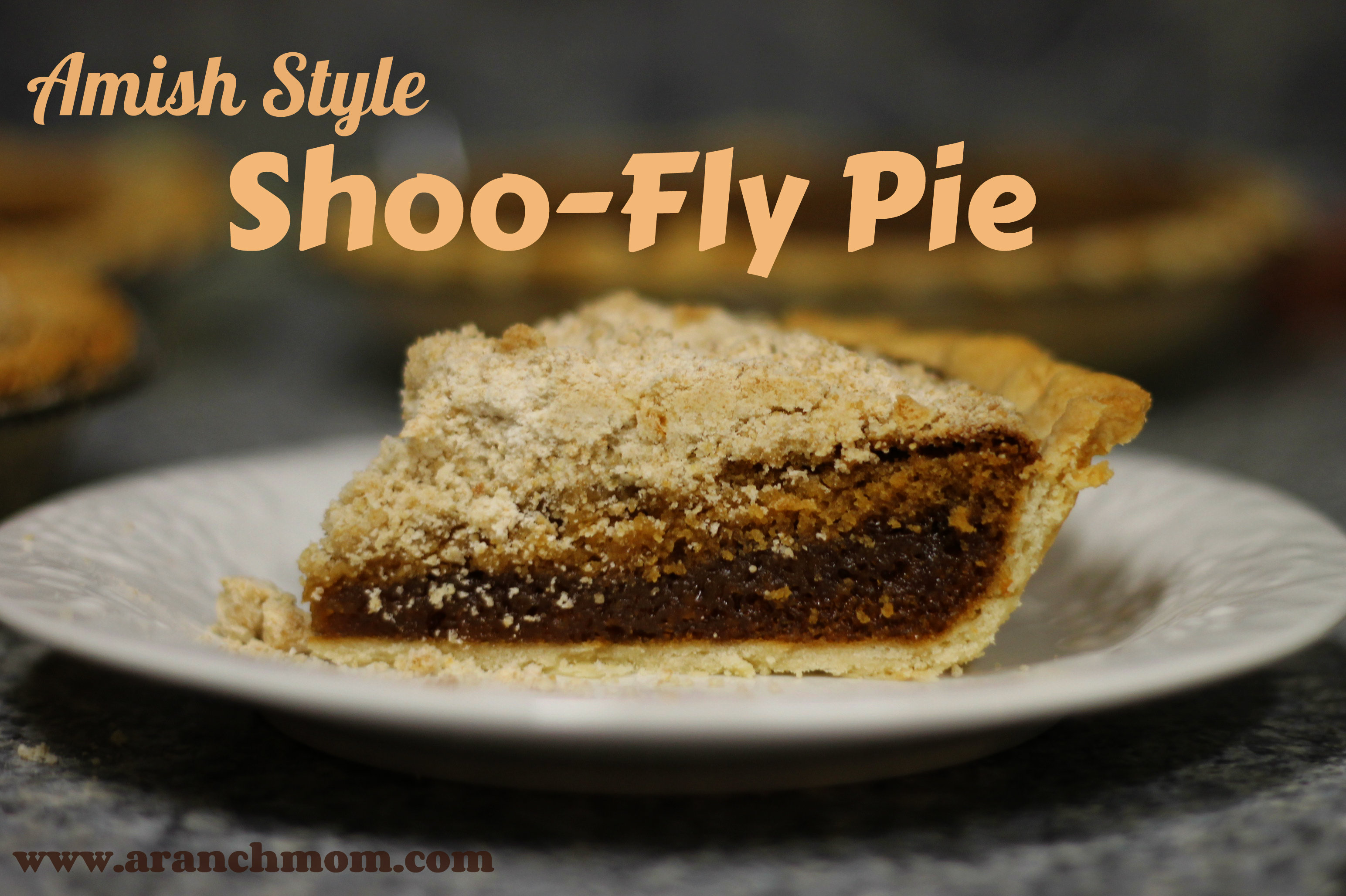 9d36ff3c63677 Amish-Style Shoo-Fly Pie