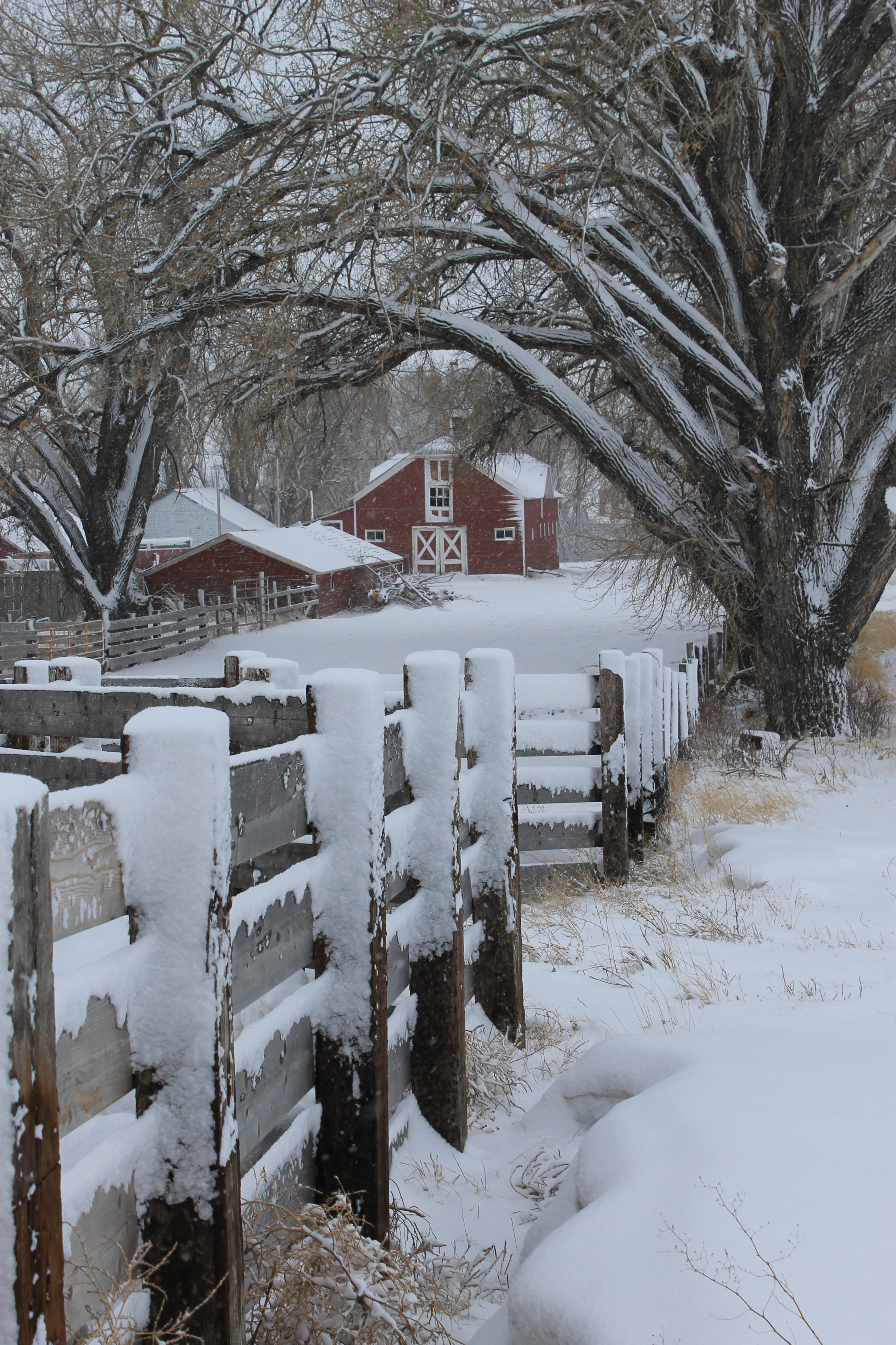 Beautiful Winter Outfit Www Pinterest Com: 1000+ Images About Farm Scenes On Pinterest