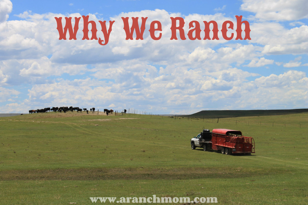 why we ranch
