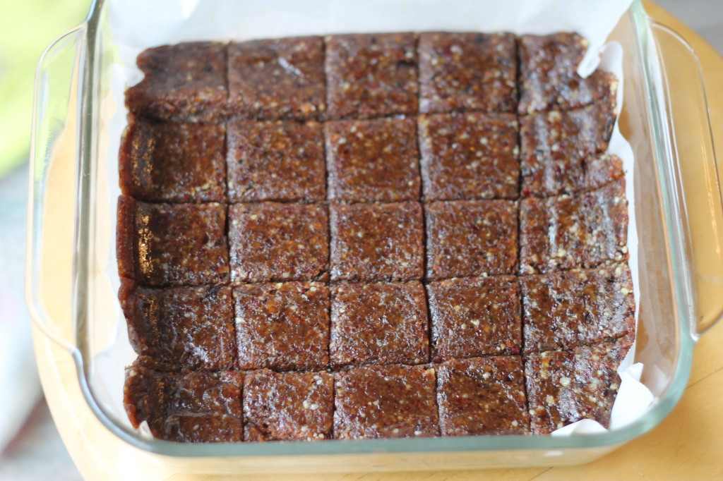 Raw Date Bars|A Ranch Mom