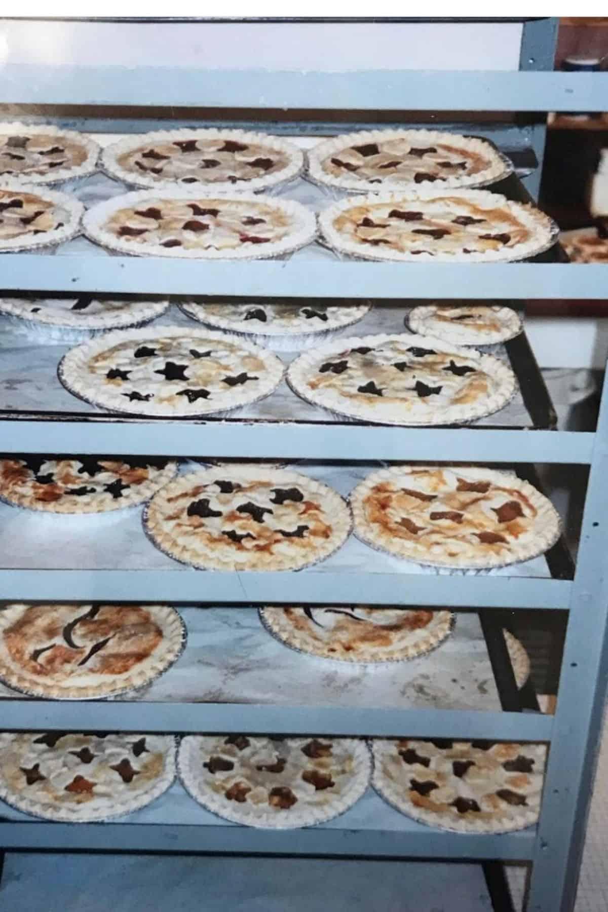 many apple pies on racks in bakery