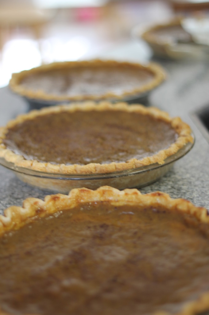 Pumpkin pie. They look brown-er because I used home cooked pumpkin, and lots of cinnamon. :)