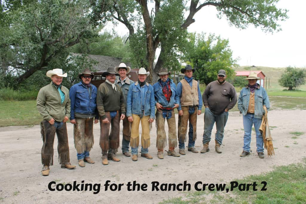 Some of the cowboys I feed regularly.