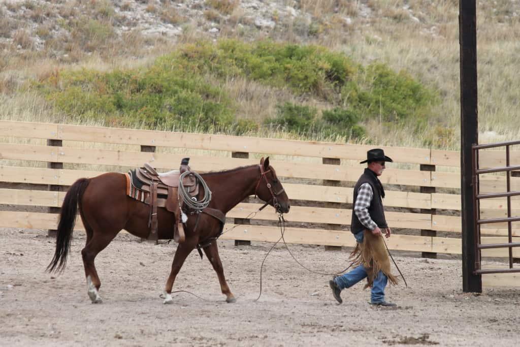 Ranch Photos
