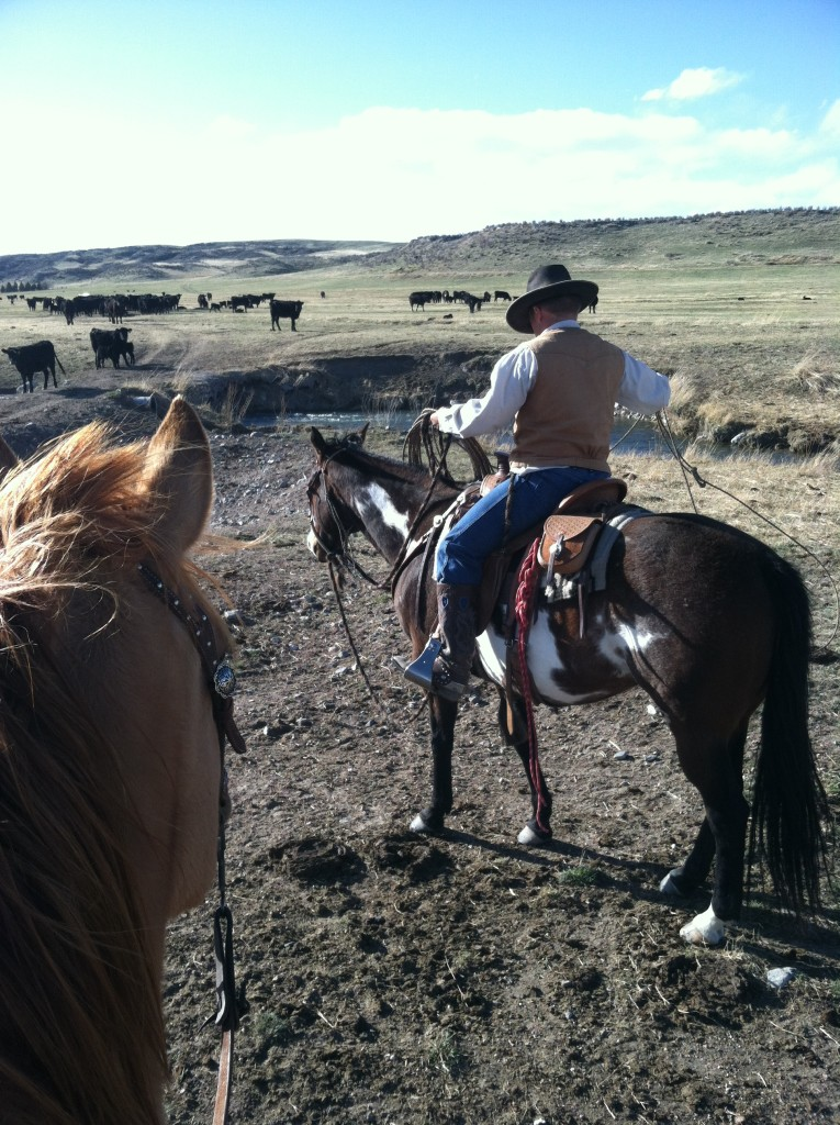 Sunday Afternoon Riding on the ranch.