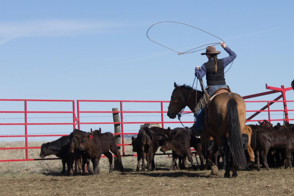 Cowboygirl.
