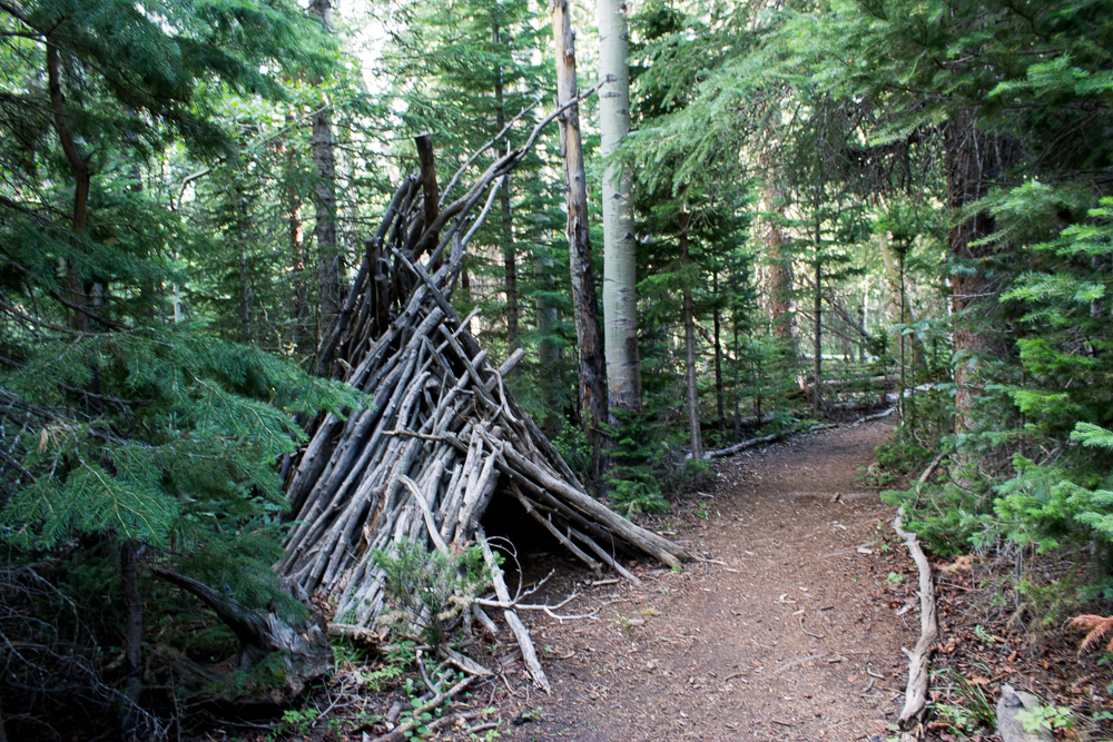 forest teepee