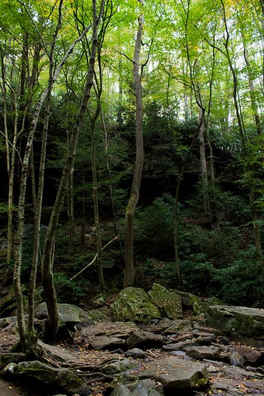 cucumber-falls-ohiopyle-falls-29