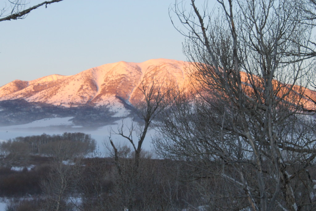 Elk Mountain in winter