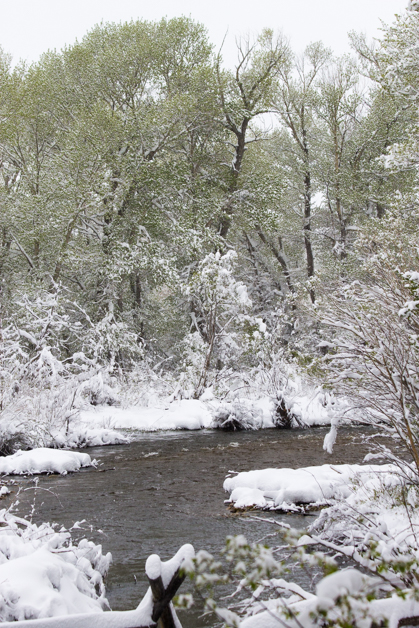 spring storm 17-14
