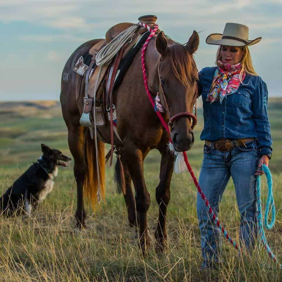 Ranch and agriculture blogs to follow.