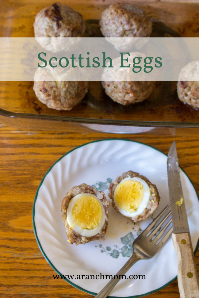 Easy Scottish Egg Recipe