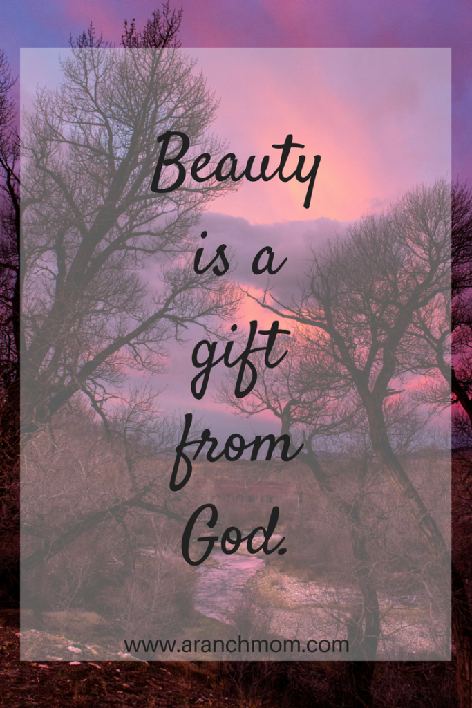 Beauty is a gift from God. God uses beauty to soothe our souls from a sin-weary world.