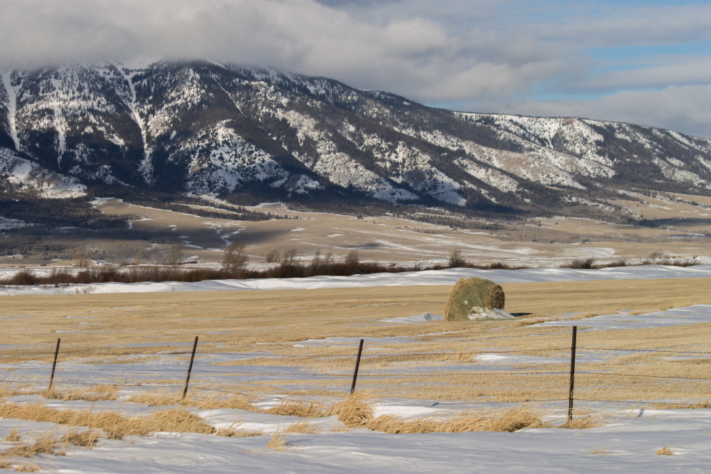 Moms who stay home --haybale in field by mountain