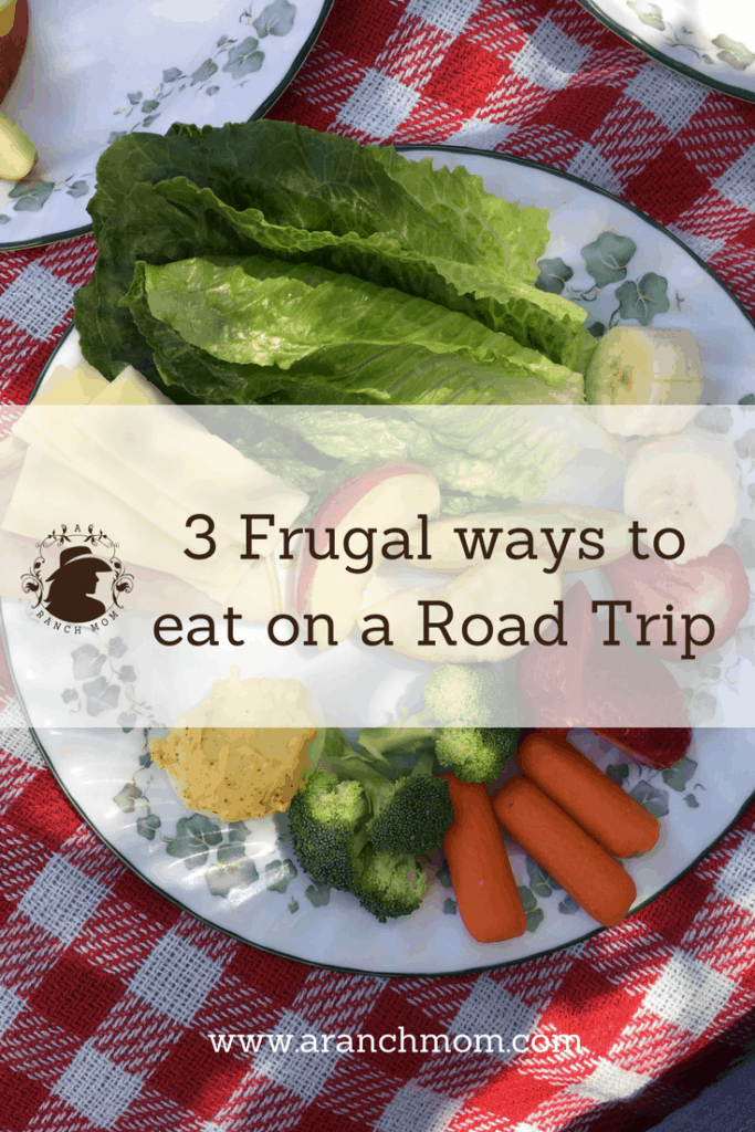 3 Frugal ways to eat on a road trip