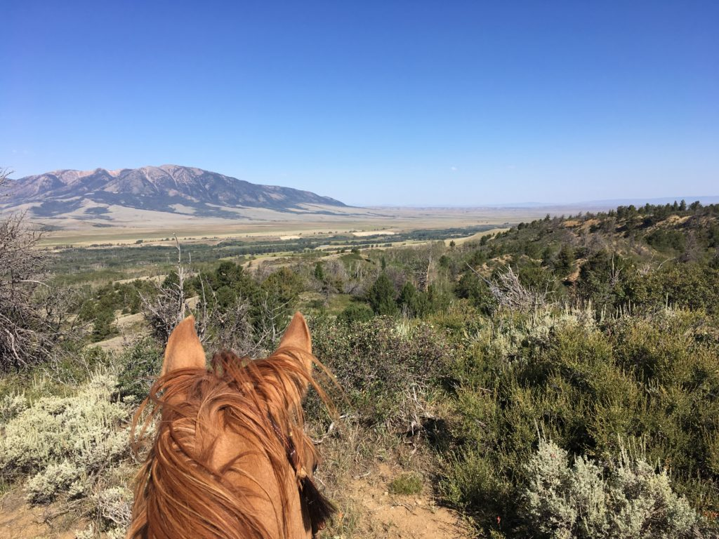10 tips for the new ranch wife. horseback riing mountain