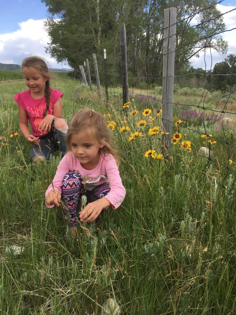 frugal ways to eat on a trip (girls in a flower field )
