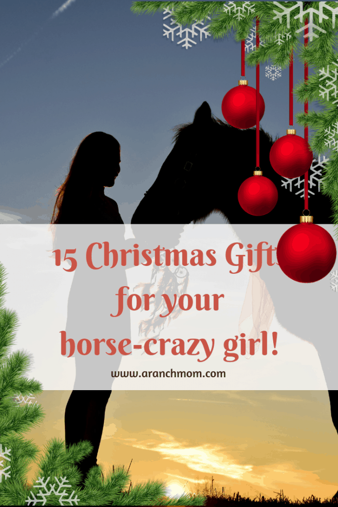 15 Christmas gifts for your horse-crazy girl!