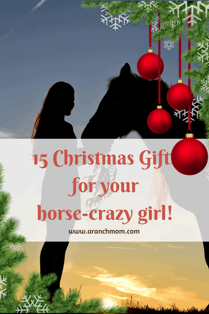 15 Christmas Gifts For Horse-Crazy Girls! - A Ranch Mom