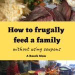 How to frugally feed a family of 6 without using coupons.