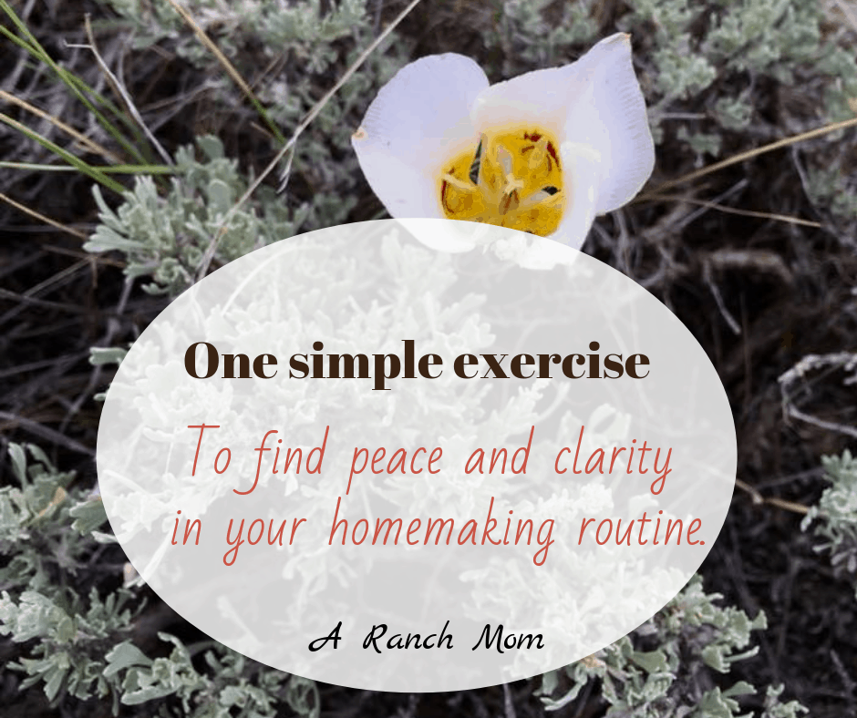 How to set your priorities in homemaking. #peace #clarity #mom