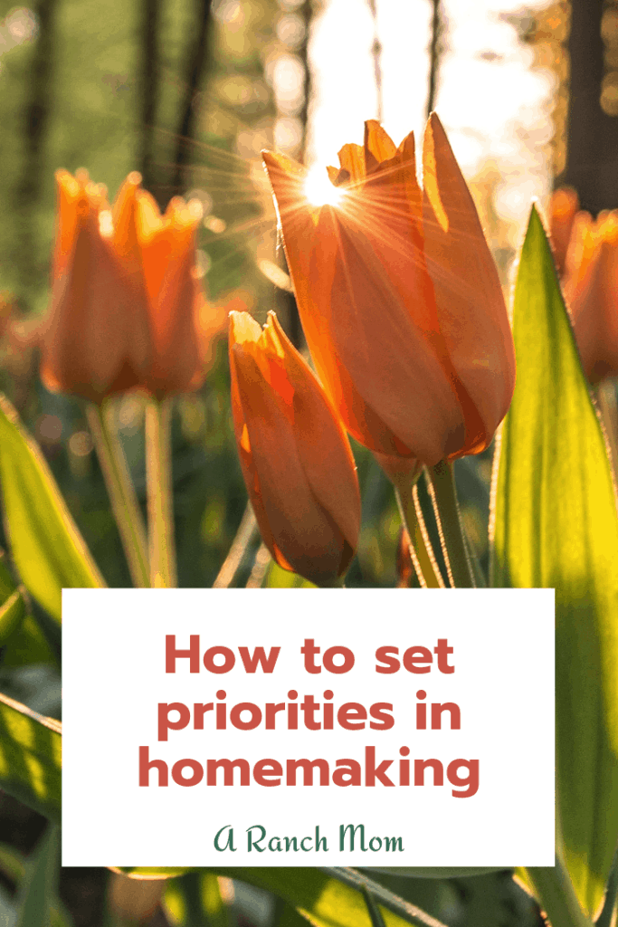How to set your priorities in homemaking. #mom #motherhood #christianmom