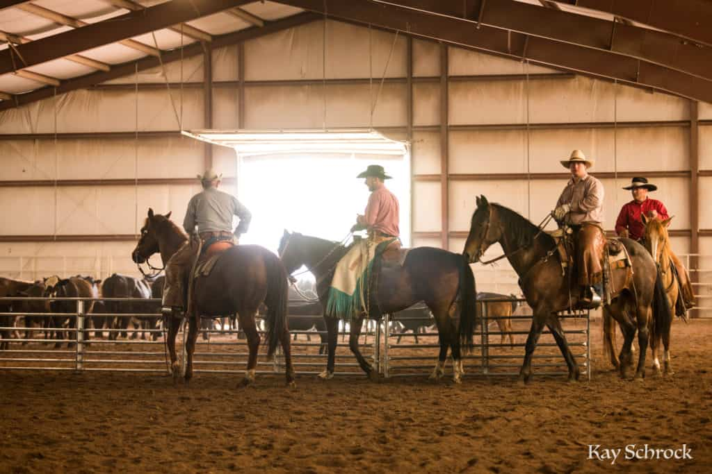 Esh Branding in Colorado - horsemen