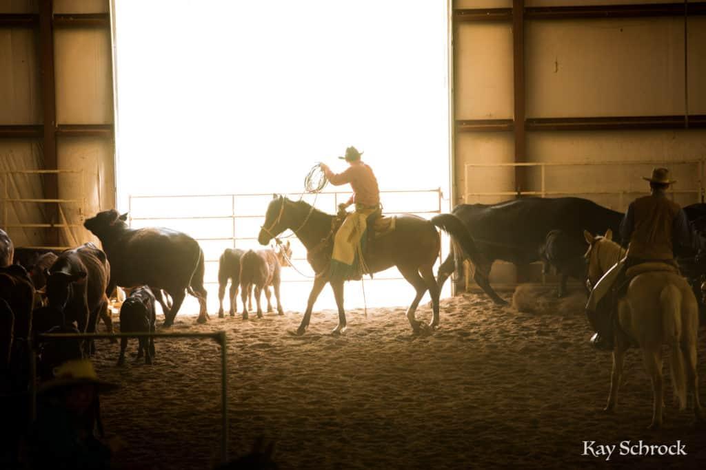 Esh Branding in Colorado - cowboy roping