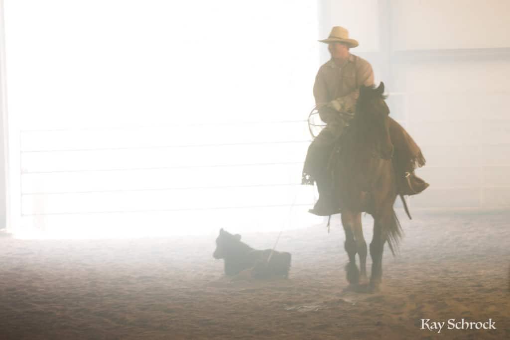 Esh Branding in Colorado - cowboy in dust