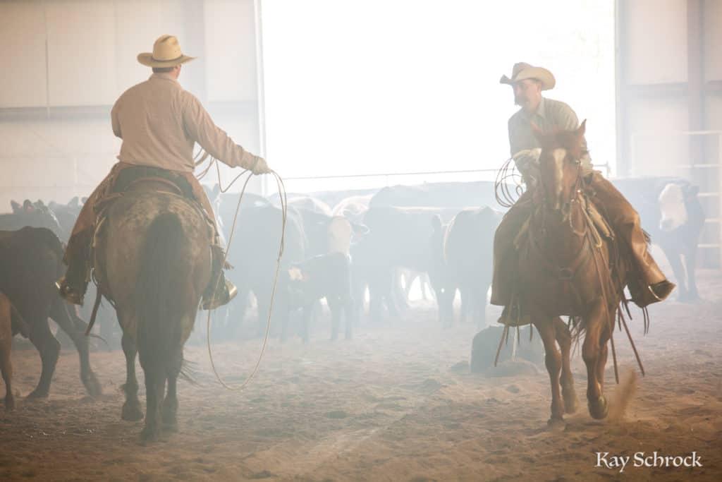 Esh Branding in Colorado - cowboys in dust