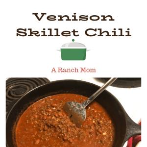 Delicious venison chili recipe. Easy, frugal, soup.