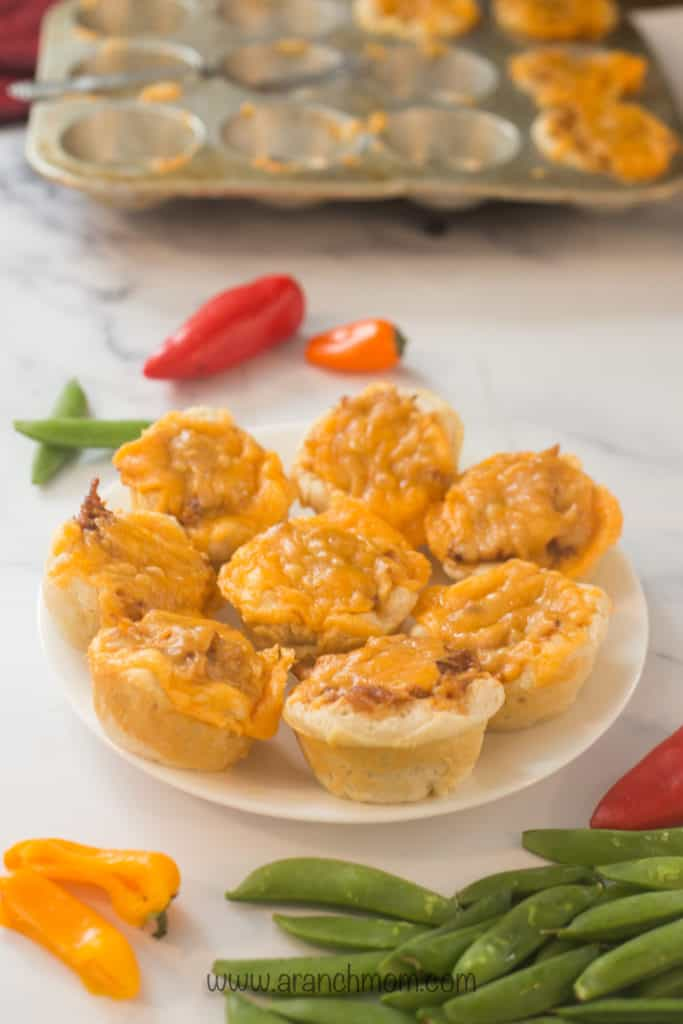 Plate of bbq chicken cups and fresh veggies