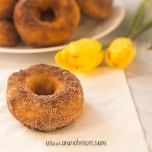 cinnamon sugar donut with tulip