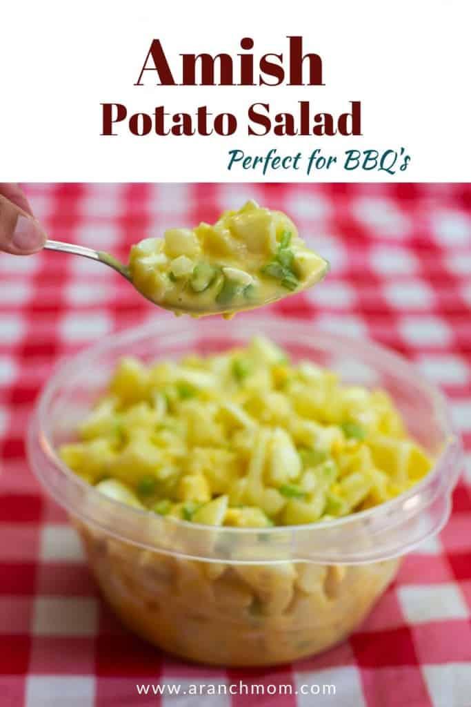 potato salad in plastic bowl