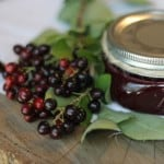 What Are Chokecherries?