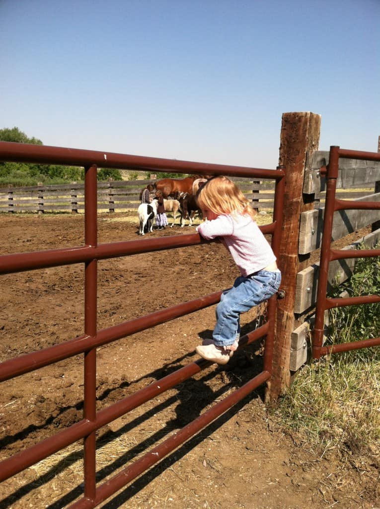small girl standing on fence rail