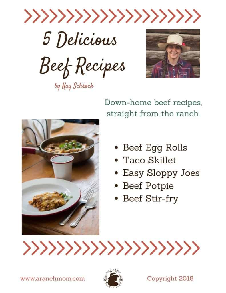 free beef recipes