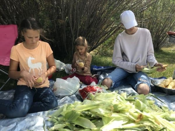 kids husking corn onto tarp