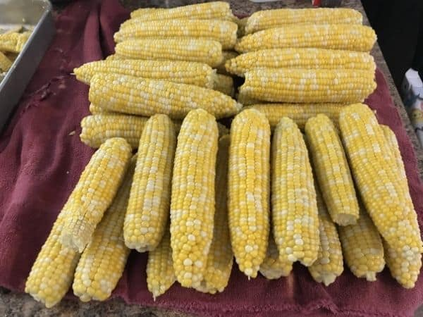 sweet corn piled on counter