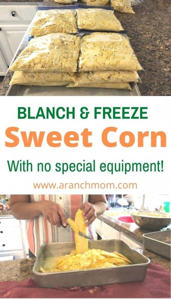 pin image freezing corn