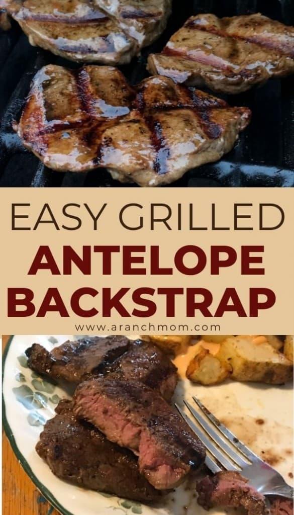 pinterest image for antelope steak