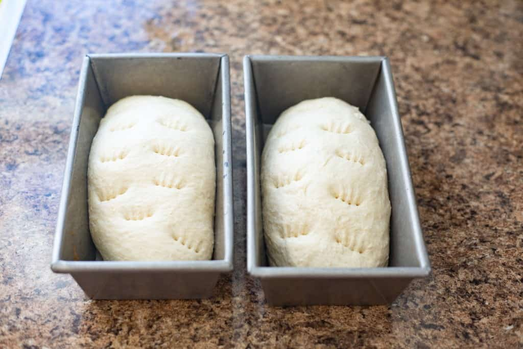 two loaves of bread dough in pans