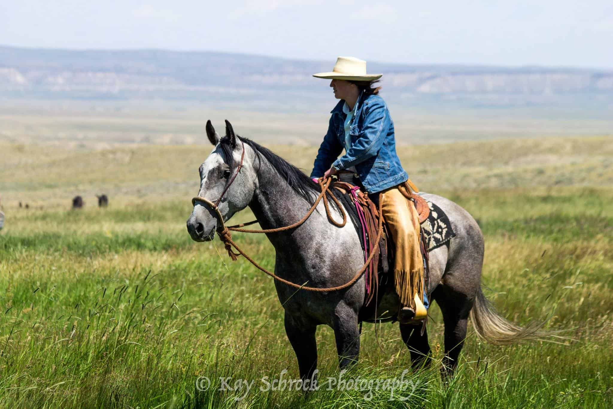 cowgirl on gray horse with chaps and flat hat