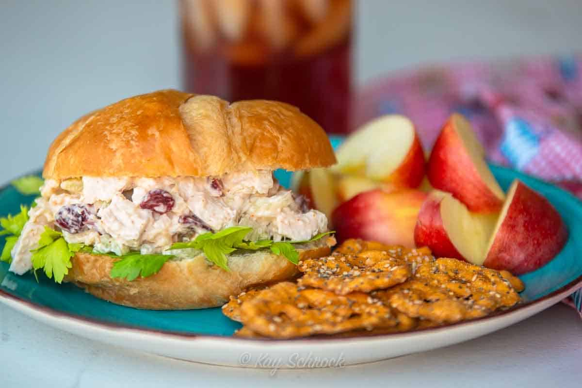 cranberry chicken salad sandwich on plate with pretzels and apples