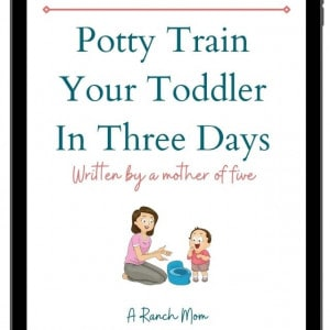 potty training ebook cover